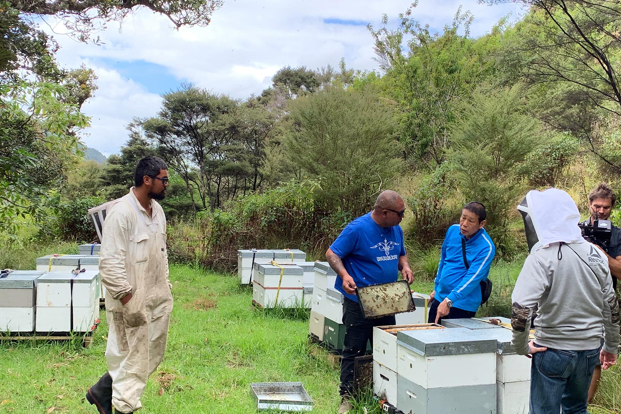 ニュージーランド養蜂場